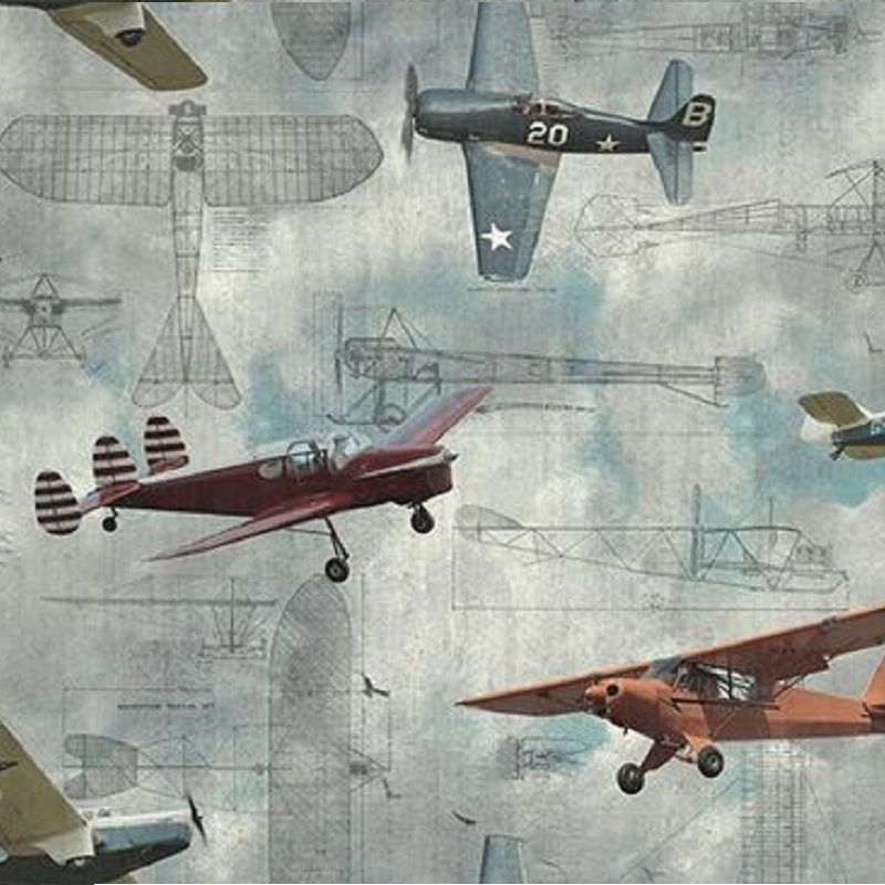 Mural Home - Aero Show Rebel Walls